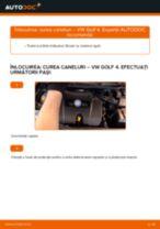 Când trebuie sa schimbi Curea transmisie cu caneluri VW GOLF IV (1J1): pdf manual