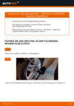 Empfehlungen des Automechanikers zum Wechsel von VW Golf 4 1.6 Federn