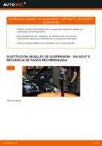 Cómo cambiar: muelles de suspensión de la parte delantera - VW Golf 5 | Guía de sustitución