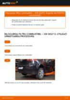 Tutorialul etapizat în format PDF pentru înlocuirea Filtru combustibil la VW GOLF V (1K1)