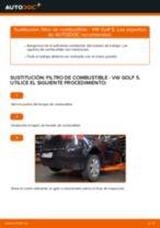 Cómo cambiar: filtro de combustible - VW Golf 5 | Guía de sustitución