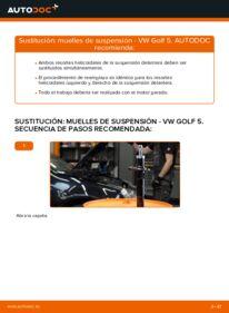 Cómo realizar una sustitución de Muelles de Suspensión en un VW GOLF