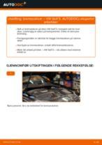 PDF med trinn for trinn-veiledning for bytte av VW GOLF V (1K1) Bremseskiver
