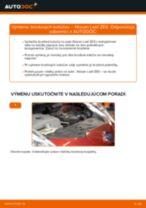 PDF návod na výmenu: Brzdový kotouč NISSAN LEAF zadné a predné