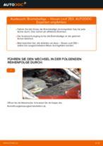 Wie Axialgelenk Spurstange NISSAN LEAF auswechseln und einstellen: PDF-Anleitung