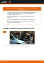 Podrobné PDF tutoriály, jak vyměnit Brzdovy kotouc na autě FIAT PUNTO (188)