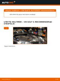 Så byter du Multirem på 1.9 TDI Golf 5