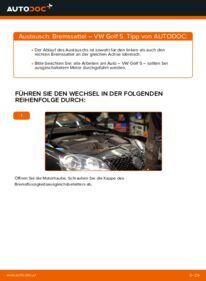 Wie der Austausch bewerkstelligt wird: Bremssattel beim VW GOLF