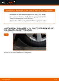 Wie der Wechsel ausgeführt wird: Radlager beim VW GOLF