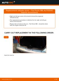 How to carry out replacement: Tailgate Struts on 1.2 60 Fiat Punto 188