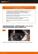 Εγχειρίδιο εργαστηρίου για Audi A6 4f