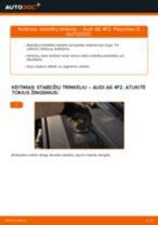 Kaip pakeisti Audi A6 4F2 stabdžių trinkeliu: galas - keitimo instrukcija