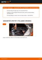 PDF guide för byta: Hjullagersats AUDI A6 Sedan (4F2, C6) bak och fram