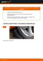 Udskiftning af Styrekugle: pdf vejledning til PEUGEOT 206