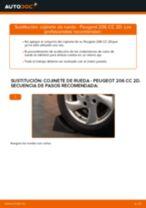 Cómo cambiar: cojinete de rueda de la parte trasera - Peugeot 206 CC 2D | Guía de sustitución
