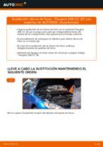 Cómo cambiar: discos de freno de la parte trasera - Peugeot 206 CC 2D | Guía de sustitución