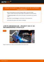 PDF guide för byta: Bromsskivor PEUGEOT 206 CC (2D) bak och fram