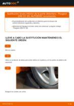 Cambio Pastillas De Freno traseras y delanteras PEUGEOT 206 CC (2D): guía pdf