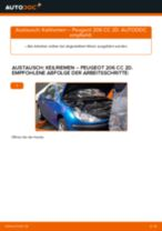 SNR CA4PK813 für 206 CC (2D) | PDF Handbuch zum Wechsel