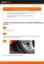 Wie Peugeot 206 CC 2D vorderer unterer Lenker wechseln - Schritt für Schritt Anleitung