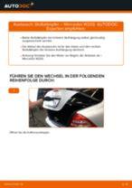 Stoßdämpfer wechseln MERCEDES-BENZ C-CLASS: Werkstatthandbuch