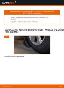 Kuidas välja vahetamist läbi viia: 3.0 TDI quattro Audi A6 4f2 Õõtshoob