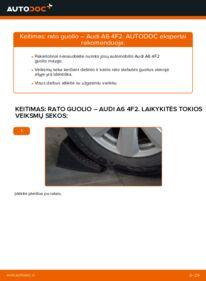 Kaip atlikti keitimą: 3.0 TDI quattro Audi A6 4f2 Rato guolis