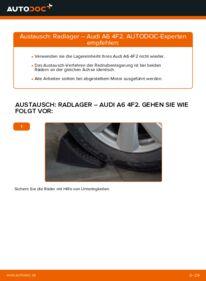 Wie der Wechsel durchführt wird: Radlager 3.0 TDI quattro Audi A6 C6 tauschen