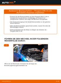 Wie der Wechsel durchführt wird: Bremsscheiben 1.6 16V Peugeot 206 cc 2d tauschen