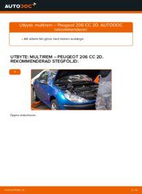 Så byter du Multirem på 1.6 16V Peugeot 206 cc 2d