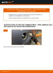 Cómo realizar una sustitución de Filtro de Combustible en un OPEL MERIVA