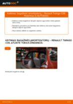 Pakeisti Ašies montavimas RENAULT TWINGO: instrukcija