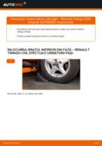 RENAULT Twingo II Kasten / Schrägheck (CNO_) tutorial de reparație și întreținere