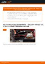 Manuale RENAULT TWINGO