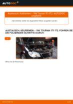VW TOURAN (1T1, 1T2) Bremssattel Reparatursatz wechseln : Anleitung pdf