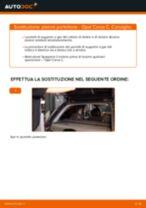 Come cambiare pistoni portellone su Opel Corsa C - Guida alla sostituzione