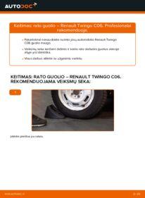 Kaip atlikti keitimą: 1.2 Twingo c06 Rato guolis