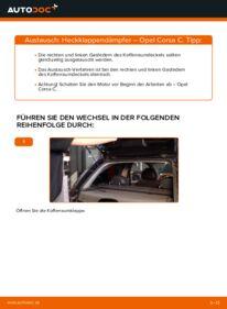 Wie der Wechsel durchführt wird: Heckklappendämpfer 1.2 (F08, F68) Opel Corsa C tauschen