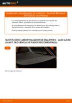 Cómo cambiar: amortiguador de maletero - Audi A4 B6 Avant | Guía de sustitución