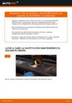 Cómo cambiar: discos de freno de la parte delantera - Audi A4 B6 Avant | Guía de sustitución