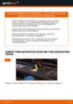 Εγχειρίδιο εργαστηρίου για AUDI Q8