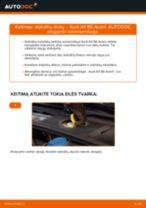 Instrukcijos PDF apie APPLAUSE priežiūrą