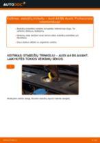 Pakeisti Stabdžių Kaladėlės AUDI A4: instrukcija
