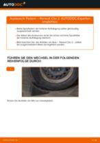 Spannrolle, Zahnriemen wechseln RENAULT CLIO: Werkstatthandbuch