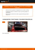 Når skifte Gassfjær bakluke CITROËN C3 I (FC_): pdf håndbok