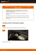 Instrukcijos PDF apie C2 priežiūrą