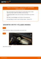 PDF guide för byta: Bromsskivor CITROËN C3 I Hatchback (FC_, FN_) bak och fram