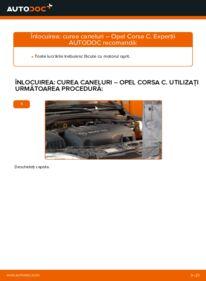 Cum să efectuați înlocuirea: Curea transmisie cu caneluri la 1.2 (F08, F68) Opel Corsa C