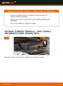 Kaip atlikti keitimą: 1.2 (F08, F68) Opel Corsa C Stabdžių Kaladėlės
