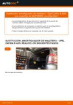 Guía de reparación paso a paso para OPEL ZAFIRA TOURER C (P12)